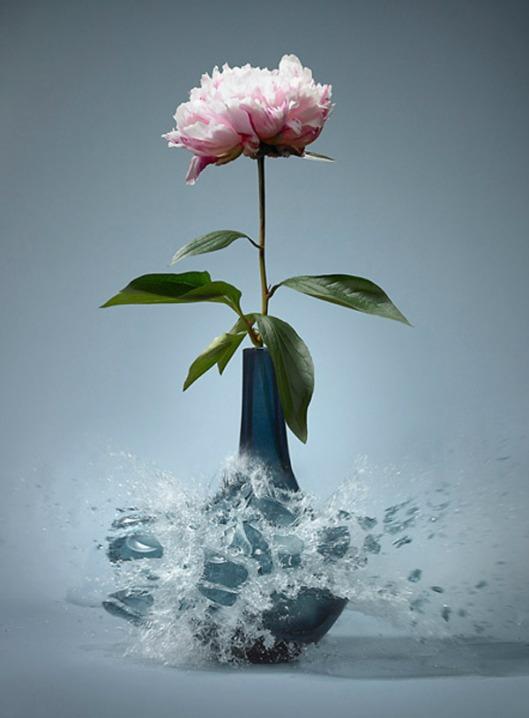 shatter martin-klimas-flower-vase007